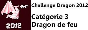 Dragon2012feu