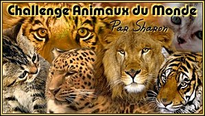 http://deslivresetsharon.files.wordpress.com/2013/01/logo-sharon.jpg?w=714