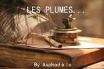 logo-plumes2-lylouanne-tumblr-com