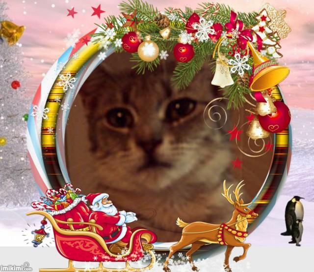 Imogène fête Noël
