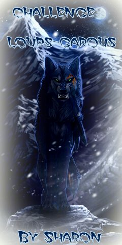 https://deslivresetsharon.files.wordpress.com/2014/10/a_loup_garou_4_pour_nina_brrr.jpg?w=714