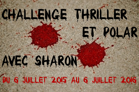 Challenge Thriller et polar - session 2015-2016 (2/3)